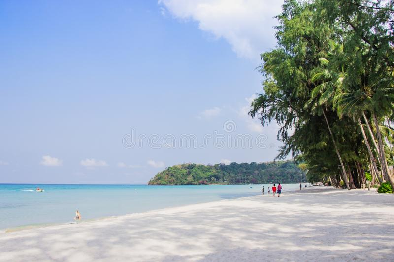 Tourist walk see the panorama of white sand beach with coconut palms taken on haad Klong Chao on tropical koh Kood island in Trat. Thailand royalty free stock photography