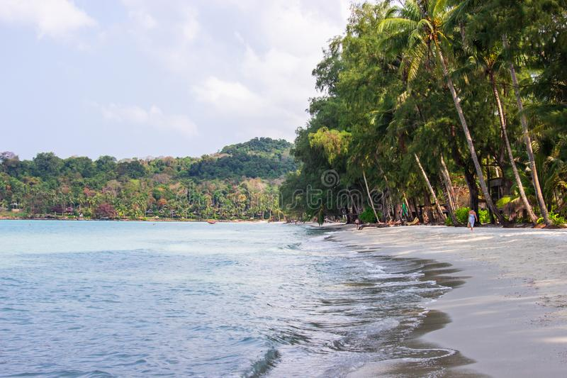 Tourist walk see the panorama of white sand beach with coconut palms taken on haad Klong Chao on tropical koh Kood island in Trat. Thailand royalty free stock images