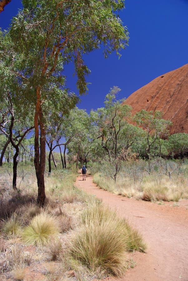 Tourist Walking Path Around Uluru. A young woman walks around the base of Uluru (Ayers Rock), Uluru – Kata Tjuta National Park, Northern Territory stock photo