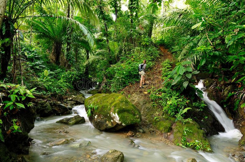 Darien jungle. Tourist in wild Darien jungle near Colombia and Panama border. Central America, exploring, extreme, adventure, people, american, view, background royalty free stock image