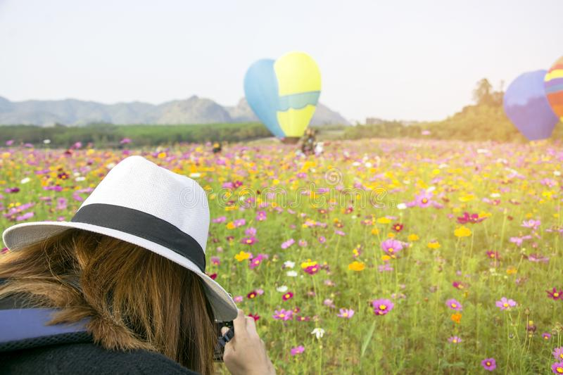 Tourist woman take a shot of photo by digital camera to beautiful blooming cosmos flower garden with with hot air balloon in a fie royalty free stock photo
