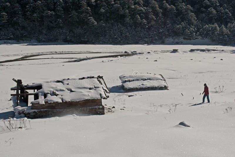 Download Touriste à La Vallée De Yumthang Photo éditorial - Image du inde, weather: 56476711
