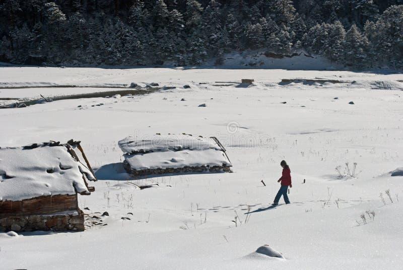 Download Touriste à La Vallée De Yumthang Photo stock éditorial - Image du environnement, hiver: 56476808