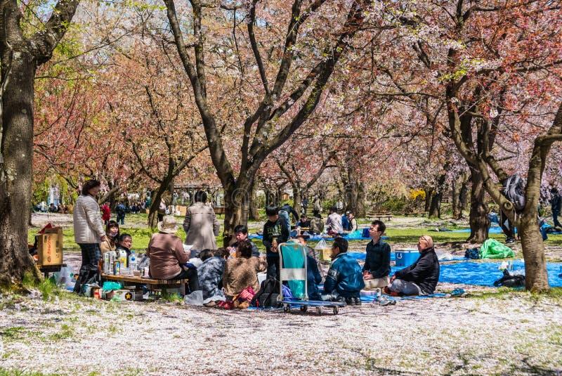 Download Touriste Au Parc De Château De Hirosaki Image stock éditorial - Image du canal, cerise: 76088354