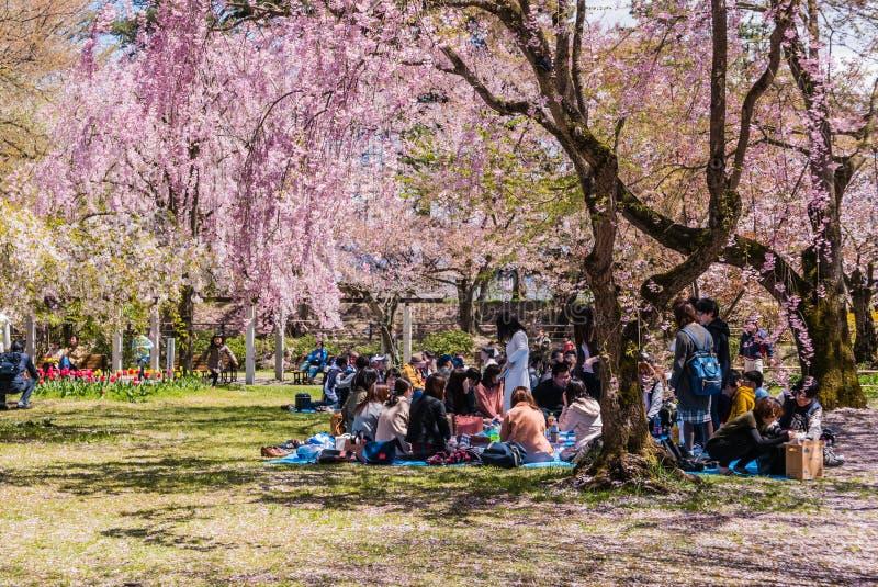 Download Touriste Au Parc De Château De Hirosaki Photo éditorial - Image du paysage, ruine: 76088456