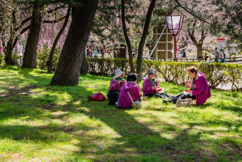 Download Touriste Au Parc De Château De Hirosaki Photo stock éditorial - Image du saison, normal: 76089013