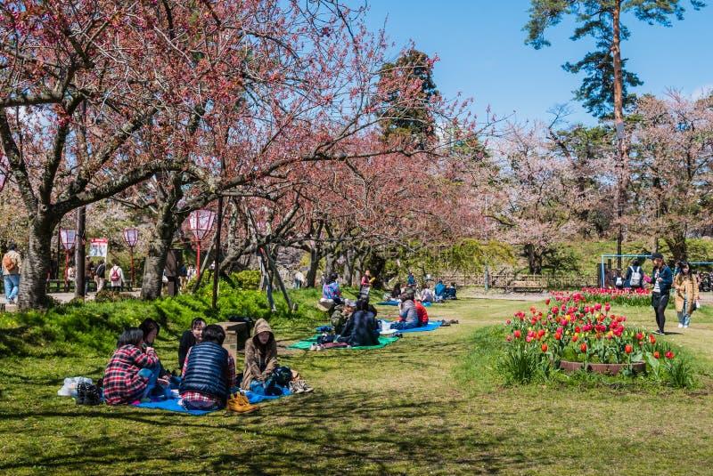 Download Touriste Au Parc De Château De Hirosaki Photo stock éditorial - Image du bleu, culturel: 76089128