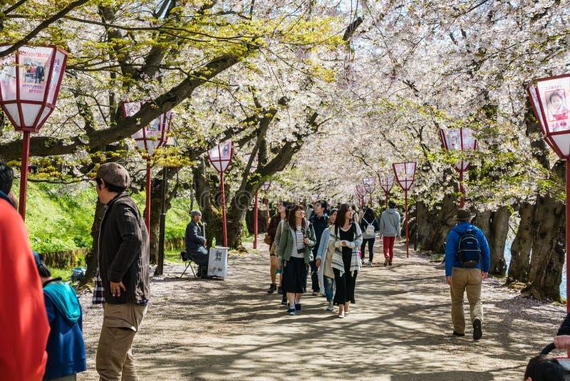 Download Touriste Au Parc De Château De Hirosaki Photographie éditorial - Image du centrale, propriétés: 76089537