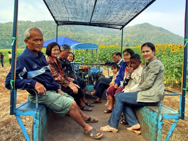 Touriste dans le domaine de tournesol photographie stock