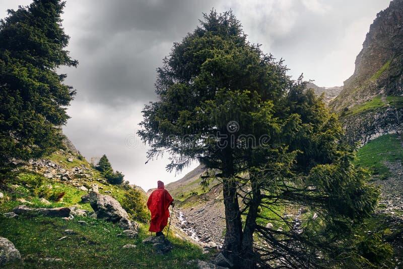 Touriste dans les montagnes images libres de droits