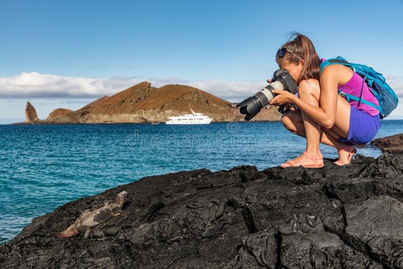 Touriste des Galapagos photographiant l'iguane marin sur l'île de Santiago aux îles Galapagos image libre de droits
