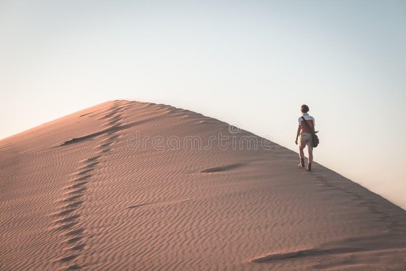 Touriste marchant sur la dune scénique 7 à la baie de Walvis, désert de Namib, parc national de Namib Naukluft, Namibie Lumière d photos stock