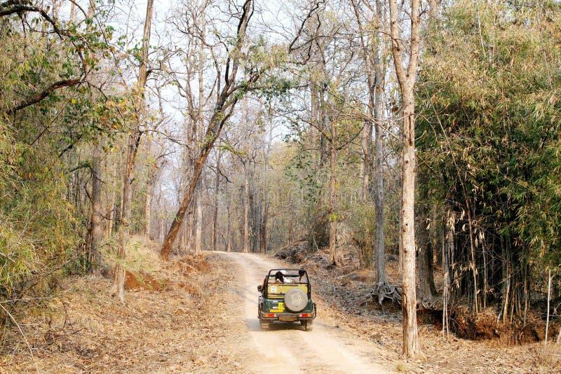 Touriste se déplaçant dans la jeep de safari dans la réservation de tigre de Pench photographie stock libre de droits