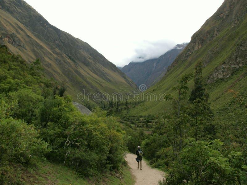 Touriste sur la vallée de journal d'Inca photos stock