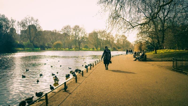 Touristen auf dem See in St. James Park London lizenzfreie stockfotos