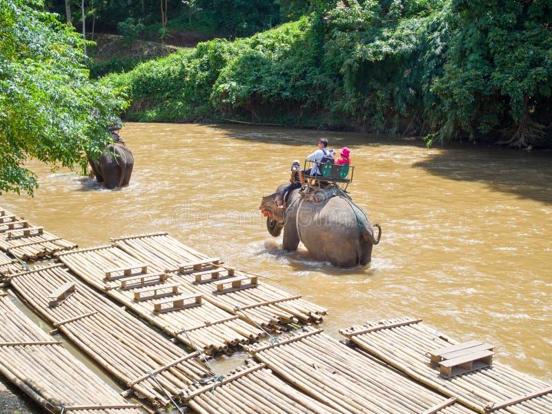 Touristen, die auf Elefanttrekking fahren lizenzfreie stockfotos