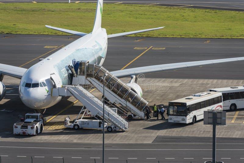 Touristen, die Flug von Azoren-Fluglinien Sata Internacional verschalen lizenzfreies stockfoto