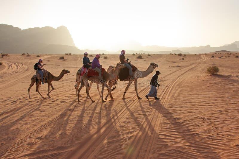 Touristen, die Kamele bei Sonnenuntergang in der Wadi Rum-Wüste, Jordanien reiten stockfoto