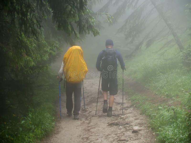 Touristen gehen auf eine Gebirgsbahn am nebeligen Tag Tatra Berge, Polen lizenzfreie stockfotos