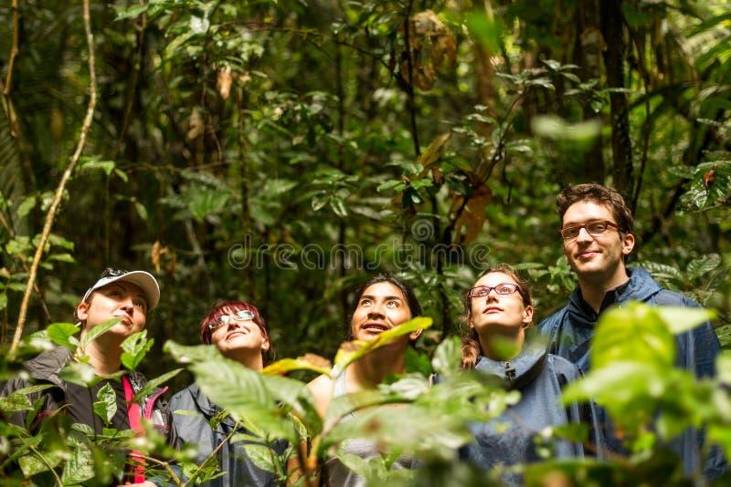 Touristen gruppieren in Amazonas-Gebiet lizenzfreies stockfoto