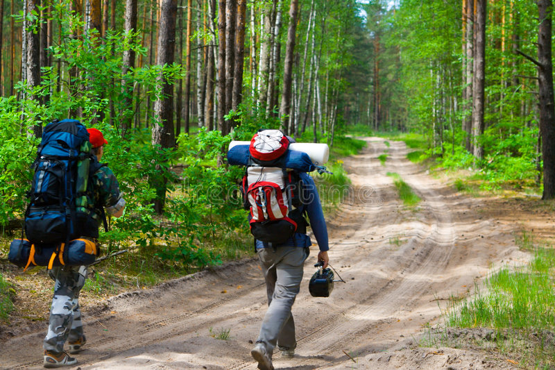 Touristen am Holz lizenzfreie stockbilder