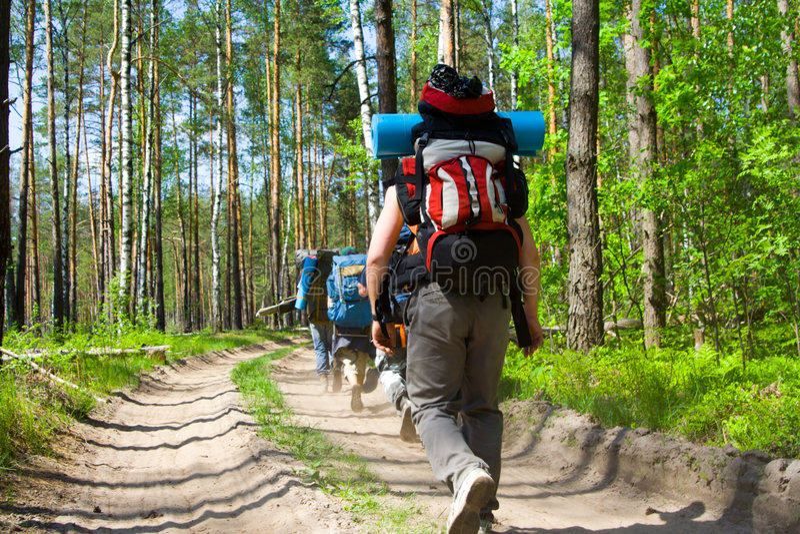 Touristen am Holz stockfotografie