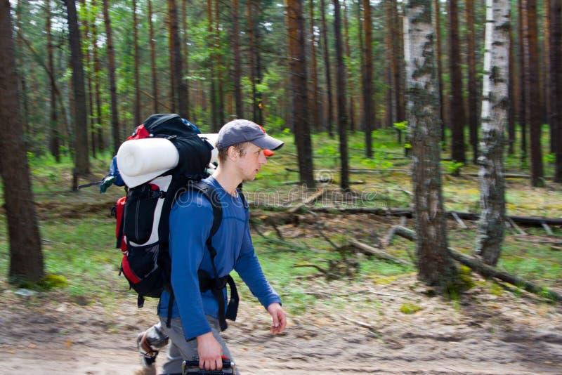 Touristen am Holz stockfotos