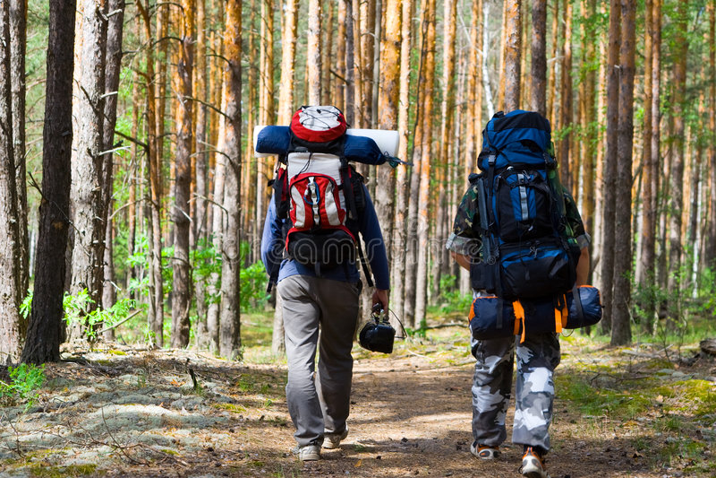 Touristen am Holz lizenzfreie stockfotografie