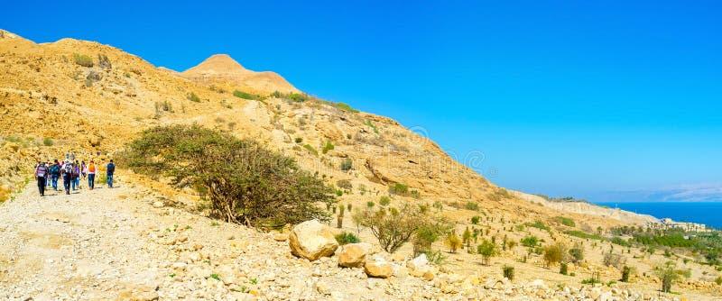 Touristen in Judean-Wüste stockbild