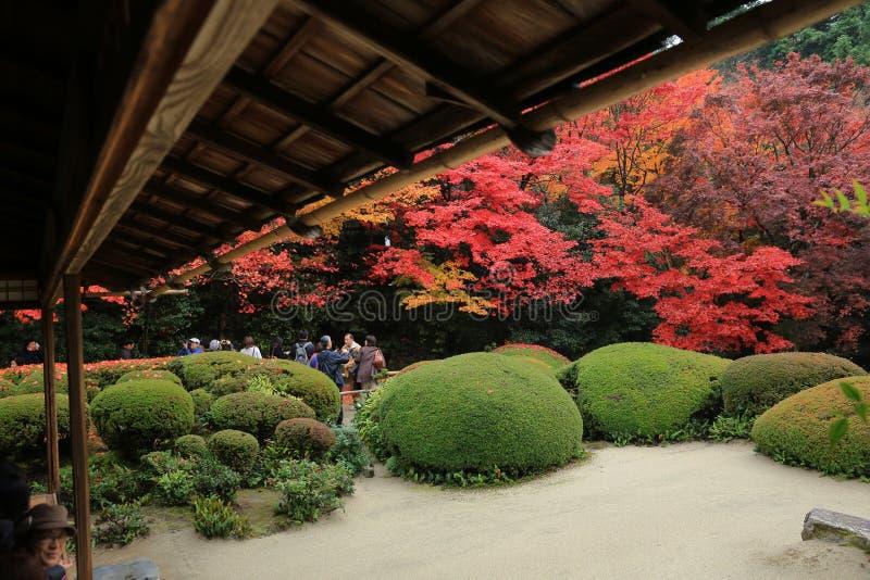 Touristen sitzen und beobachten, dass Herbstsaison von Shisen-im Garten arbeiten lizenzfreie stockfotos