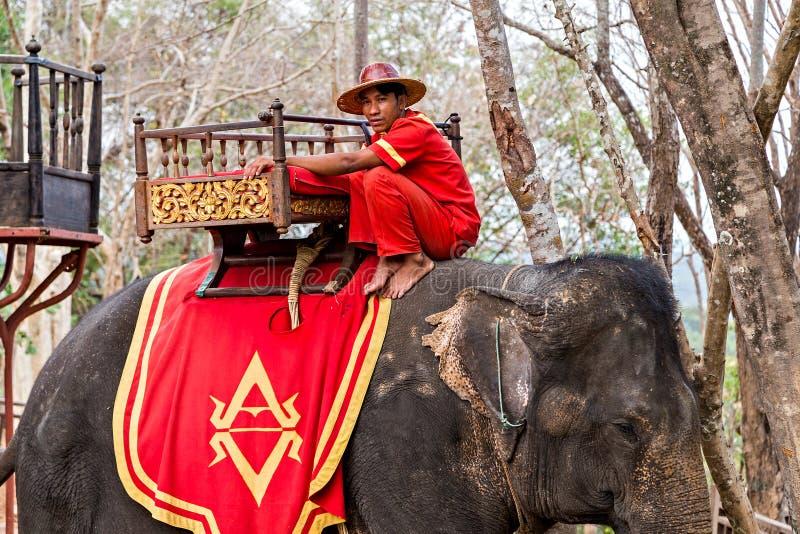 Touristentrekkings-Fahrelefant Siem Reap, Kambodscha lizenzfreie stockfotos