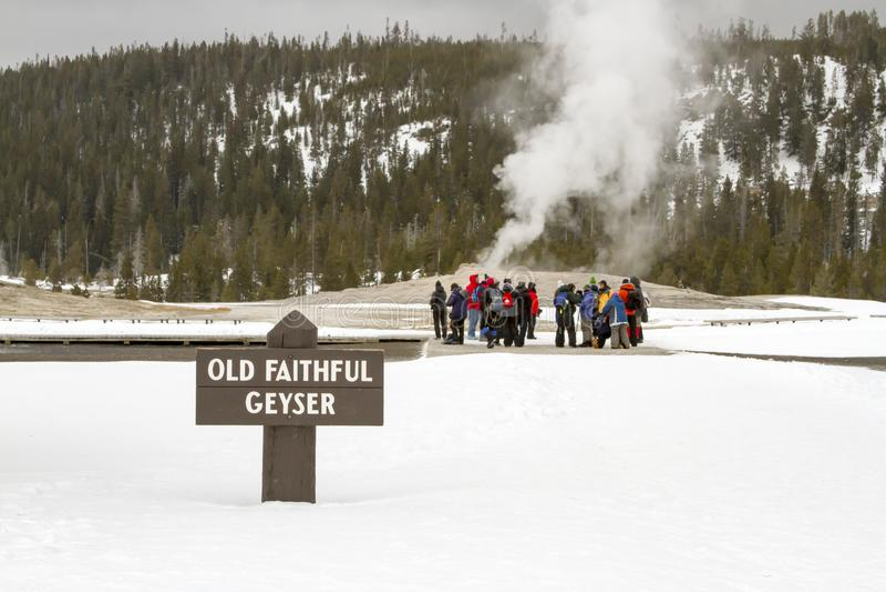 Touristes au vieux geyser fidèle, parc national de Yellowstone, Wyom photographie stock