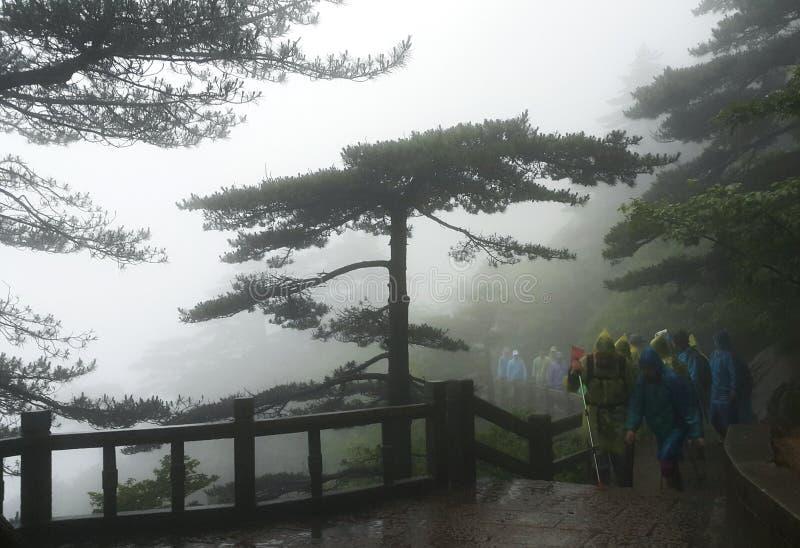 touristes augmentant les montagnes jaunes dans le jour brumeux image libre de droits