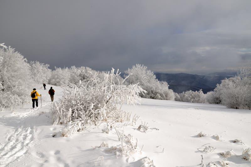 Touristes dans le paysage d'hiver images libres de droits