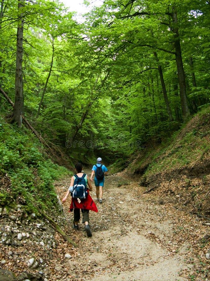 Touristes en vallée de montagne photo stock