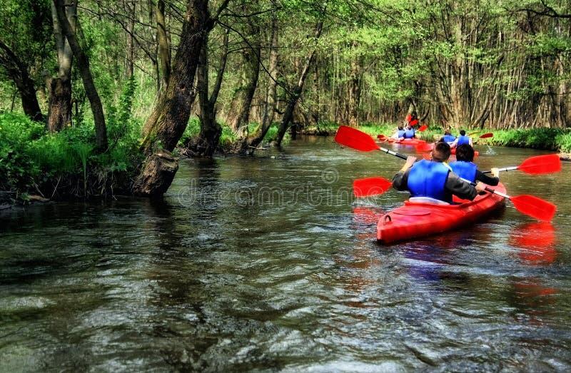 Touristes kayaking sur la rivière dans la forêt photo stock