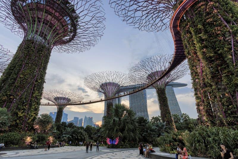 Touristes marchant dans la région de verger de Supetree aux jardins par la baie à Singapour photographie stock