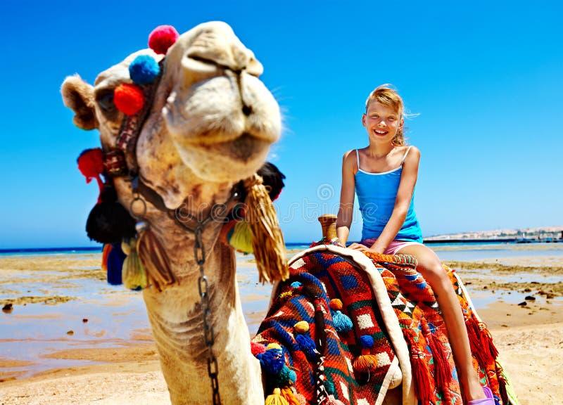 Touristes montant le chameau sur la plage de l'Egypte. photo stock
