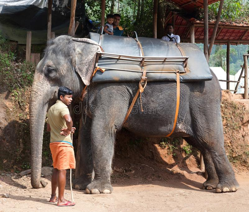 Touristes montant sur un elefant dans l'état du Kerala, Inde photo libre de droits