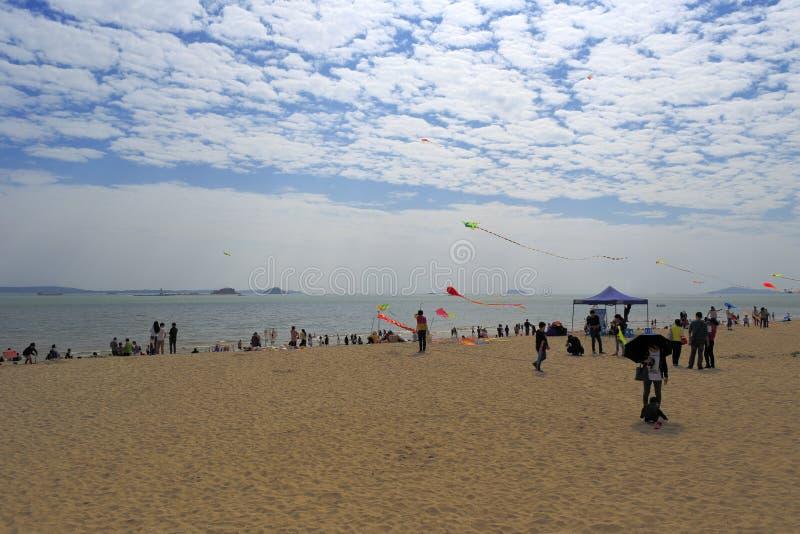 Touristes pilotant des cerfs-volants sur la plage images libres de droits