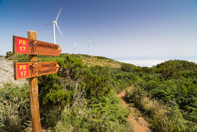 Touristic slinga i den Madeirdan platån Paul da Serra arkivfoton