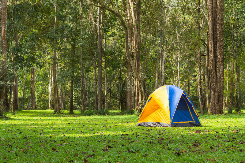 Download Touristic Tent In Forest, Thailand Stock Photo - Image: 32431858