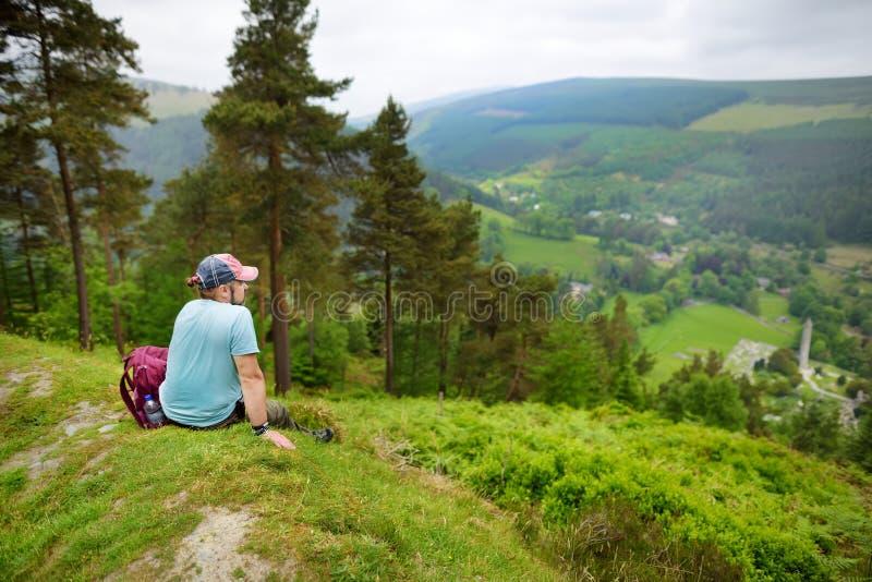 Touristisch, das Waldland des Wicklow-Gebirgsnationalparks erforschend Alte Kiefer und üppiges Grün von Glendalough-Tal, Grafscha stockfotos