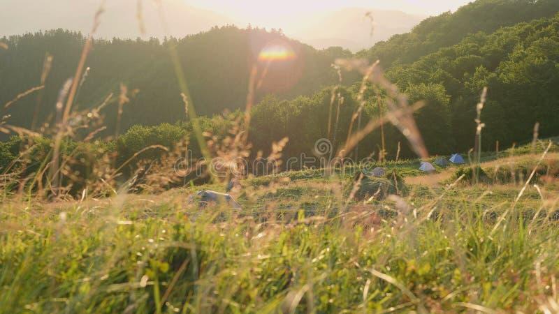 Touristische Zelte im sunup stockfoto