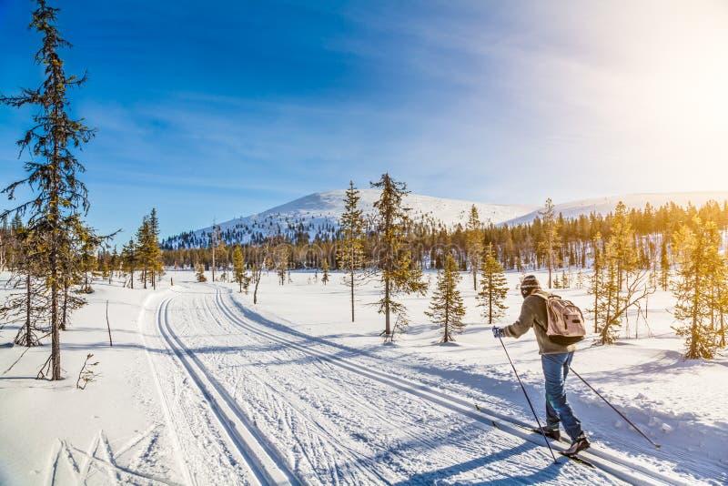 Touristischer Skilanglauf in Skandinavien bei Sonnenuntergang stockbild