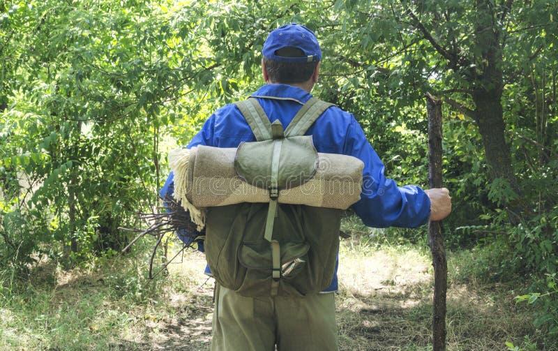 Touristischer tragender Rucksack und Halten des hölzernen Stockes beim Gehen in das forestConcept der aktiven Lebensstil- und Vag stockbild
