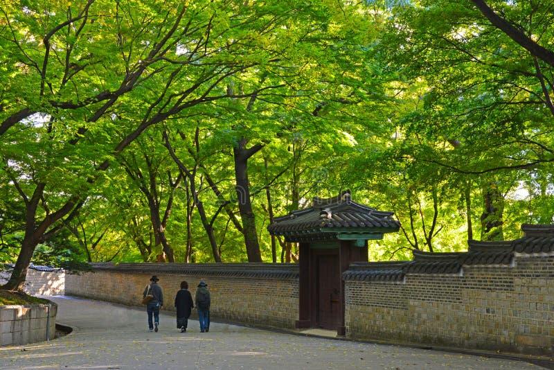 Touristisches Gehen entlang Steinwand des geheimen Gartens changdeokgung Palastes stockfoto