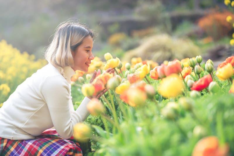 Touristisches Sitzen und Einfassung der jungen schönen Asiatinnen durch buntes Tulpenfeld lizenzfreies stockfoto