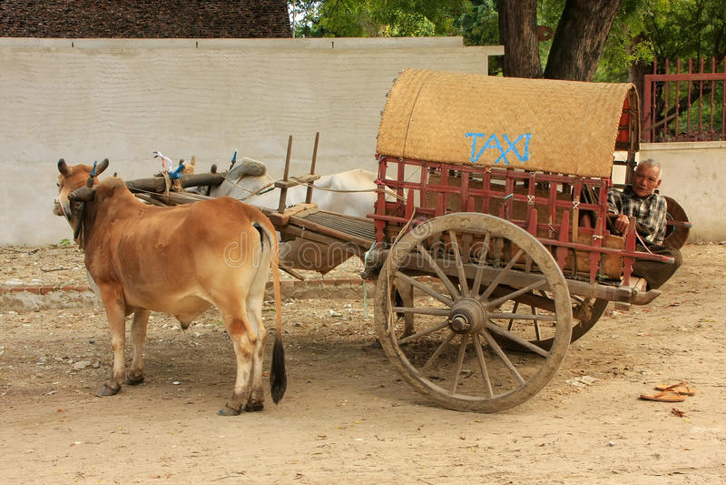 Touristisches Taxi in Mingun, Mandalay, Myanmar lizenzfreie stockbilder