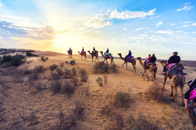 The tourists on the camel in the desert in Jaisalmer, Rajasthan, India stock photos